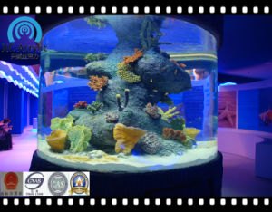 Cylindrical Aquarium pictures & photos