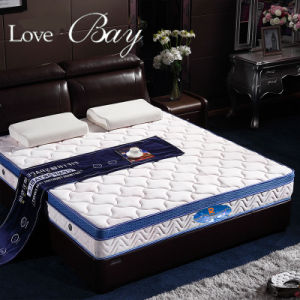 Coconut Palm Mattress, Spring Mattress, Bedroom Furniture pictures & photos
