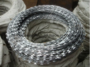 Supplier of High-Quality Galvanized Razor Barbed Wire pictures & photos