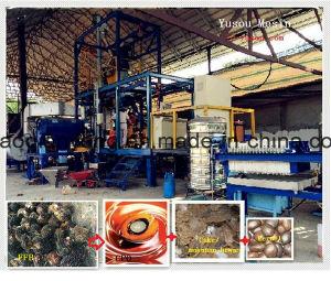 1t-20t/H Palm Fruit Oil Pressing Equipment pictures & photos