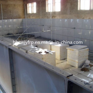 SMC Water Tank with Elevated Steel Structure in UAE pictures & photos