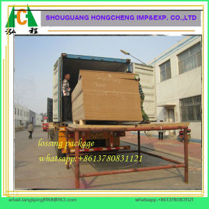 Raw MDF Board/Plain MDF Board pictures & photos