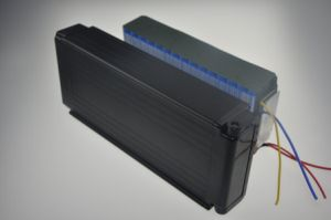 36V 10ah Rear Rack Type Lithium Battery Pack for E-Bike pictures & photos