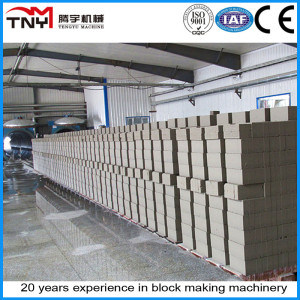 AAC Block for Autoclave Machinery Production Line pictures & photos