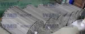 Chain Driven Conveyor Belt (Stainless Steel Wire Mesh) pictures & photos