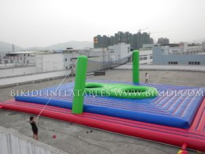 Inflatable Volleyball Sport Games, Outdoor Inflatable Field (B6041) pictures & photos