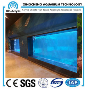 Acrylic Panels for Aquariums/Acrylic Sheets for Sale/Acrylic Manufacturers pictures & photos