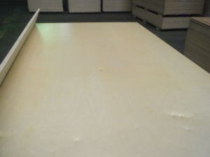 6mm Thick Plywood Price