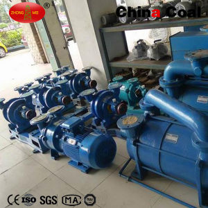 Factory Price 2BV Series Water Ring Vacuum Pump for Sale pictures & photos