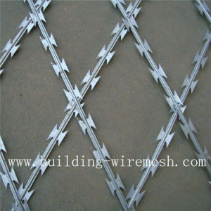 Hot Dipped Galvanized Steel Wire and Plate Razor Wire pictures & photos