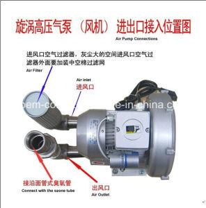 Titanium Alloy Tube Ozone Generator (SY-G100g) pictures & photos
