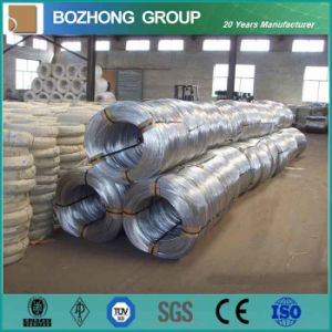 Galvanized Iron Wire for Binding (BWG6-BWG28) pictures & photos