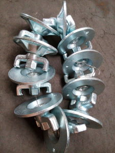 Formwork Scaffolding Accessories Tie Rod Nut pictures & photos