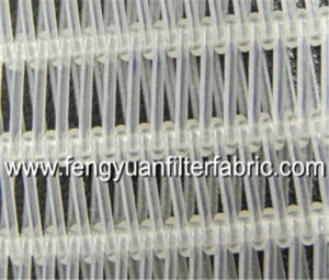 Polyester Dryer Conveyor Belt pictures & photos