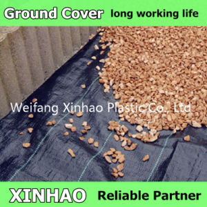 70GSM Ground Cover Fabric From Factory pictures & photos
