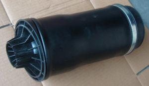 Air Spring with Shock Absorber for Hino: 5270-2253 and Toyo pictures & photos