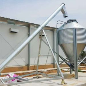 Poultry Farm Equipment with House Construction in Professional Team Service pictures & photos