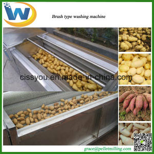 Stainless Steel Chinese Vegetable Brush Washing Peeling Machine pictures & photos
