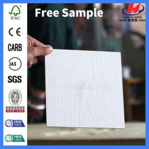 Smooth White Primer HDF Moulded Honeycom Paper Door (JHK-SK06) pictures & photos