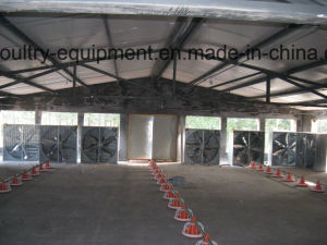Automatic Broiler Chicken House Environment Control System pictures & photos