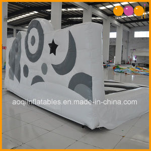 Novel Design Black and White Inflatable Planet Bouncer for Sale (AQ02397) pictures & photos
