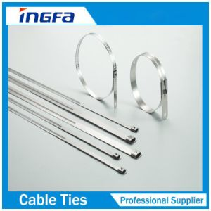Free Sample 304 316 Wrap Coated Barb Locking Cable Zip Ties 7mm 12mm pictures & photos