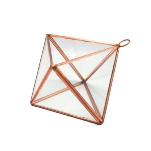 New Arrival Tabletop Glass Terrarium Vase Manufacturer pictures & photos