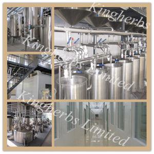 100%Nature and Pure Hericium Erinaceus Extract/Hericium Erinaceus Extract Powder pictures & photos