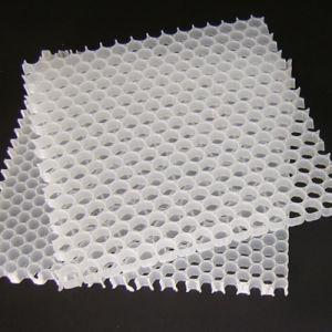 Lighting Waterproof PP Honeycomb Core pictures & photos