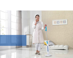 Multifunctional Steam Mop (KB-Q1401) pictures & photos