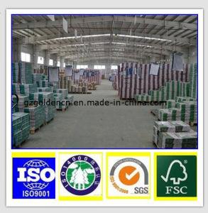 A4 Paper Manufacturer Copy Paper pictures & photos