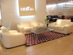 Living Room Genuine Leather Sofa (B03836) pictures & photos
