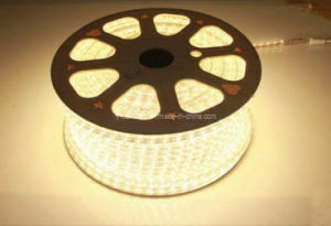 220V SMD5050 Flexible LED Strip Rope Lights Custom Cut pictures & photos