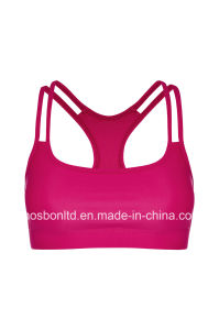 Y-Power Sports Bra - Magenta pictures & photos
