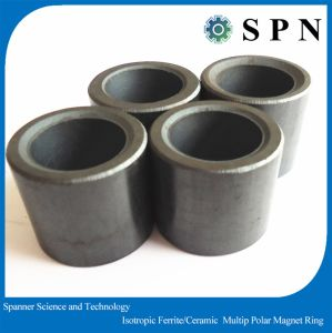 Isotropic Ferrite Multipole Magnet Rings for Stepping Motor pictures & photos