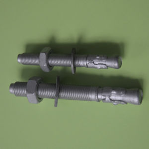 Wedge Anchor Daroment Coating Single Clip pictures & photos