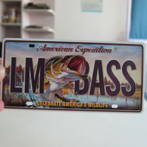 Custom Metal Plate Souvenir License Magnet pictures & photos