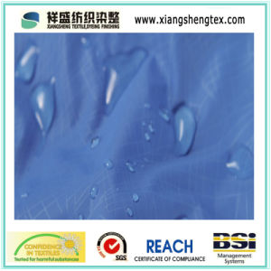 100% Nylon Taslon Teflon Waterproof Nylon Fabric for Outdoor Sportswear Down Proof pictures & photos
