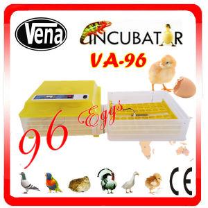 Good Price Janoel Incubator! Setting 96 Chicken Eggs Automatic Mini Egg Incubator for Sale pictures & photos