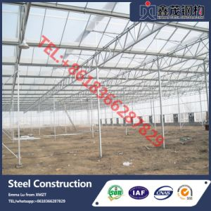 High Quality Professional EU Type Greenhouse pictures & photos