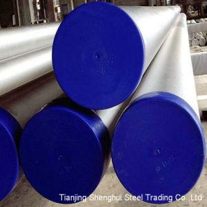 Premium Quality Stainless Steel Tube/Pipe 301 pictures & photos