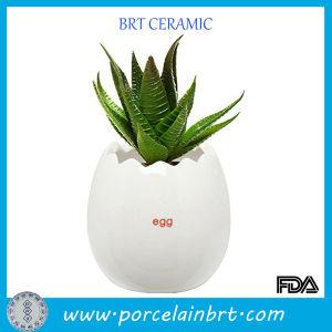 Wholesale Ceramic Egg Shaped Plant Pot pictures & photos