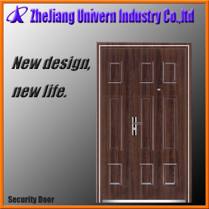 Decorative Metal Door pictures & photos