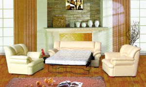 Sofa Bed-Home Style (267#) pictures & photos
