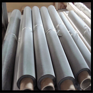 300 Micron Stainless Steel Wire Mesh pictures & photos