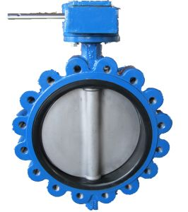 Soft Seat Double Axis Butterfly Valve in Lug Type pictures & photos