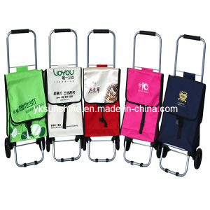 Folding Shopper Trolley Bag (XY-409E) pictures & photos