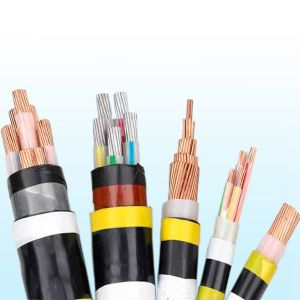 PVC Insulated PVC Sheathed Power Cable pictures & photos