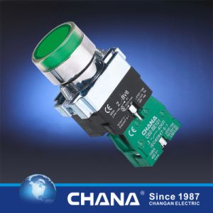 Flush Button with Lamp Directness 6V~380V pictures & photos