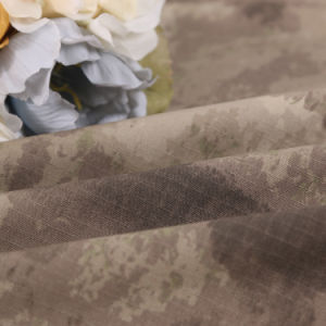 Wasteland Grey Style Polyester Cotton Ribstop Camouflage Military Fabric pictures & photos